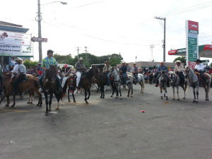The neighborhood during the horse parade